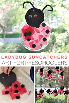Marienkäfer, Sonnenfänger basteln mit Kindern This fun ladybug craft is easy for preschoolers to make, and is a fun suncatcher for the window. Perfect for the bug-themed art table! Preschool Art Projects, Craft Projects For Kids, Craft Activities, Activities For Kids, Easy Preschool Crafts, Summer Crafts For Preschoolers, Preschool Bug Theme, Preschool Curriculum, Ladybug Art