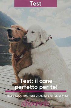 Fai il test e scopri quale cucciolo sarebbe perfetto per te, in base alla tua personalità e al tuo stile di vita. #cane #cucciolo #puppy #pet #animale #test #testpersonalità