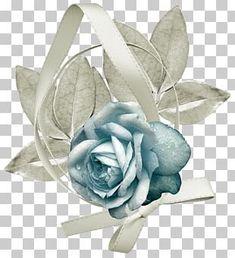 Ribbon Rose, Lace Ribbon, Diwali Clipart, White Roses, Pink Roses, Rose Flower Png, Rose Family, Planting Roses, Free Sign