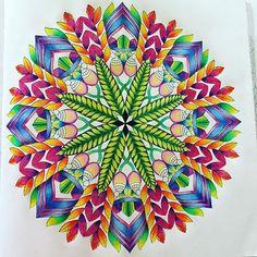 Millie Marotta Mandala DoodleMandala DesignAdult ColoringColoring BooksColoring