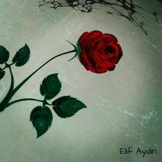 Gül Ebrusu Elif Aydın