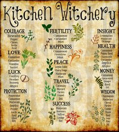 Witchcraft Herbs, Witchcraft Spell Books, Witch Spell Book, Green Witchcraft, Magick, Witchcraft Symbols, Herbal Magic, Magic Herbs, Plant Magic