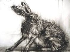 Image result for kerry buck startled hare