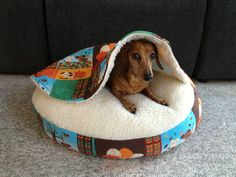 Dachshund Small Dog Bed Snuggle Bed for Burrowing Dog Autumn Doxies | eBay