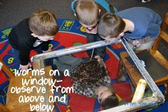 Neat idea for SRP 2013 - place pile of worms on see-through material (glass, plastic wrap, etc) and let children get a look from above and below :)