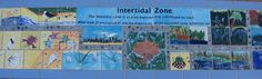 Bench at Matthys Elementary in Pasadena ISD. Ocean zone. Intertidal Zone. Artist Boat Eco-Art Residency Program.