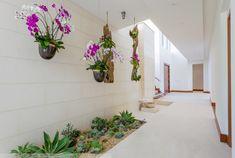 Plants For Indoor Garden