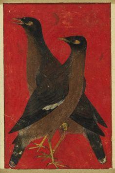 "graceandcompany: "" ♥LIKE : Mughal Painting, India, (Howard Hodgkin Collection) """