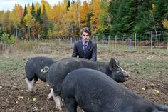 The BIG list of things you should know about raising pigs!