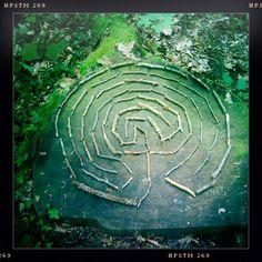 forêt labyrinthe - Google Search