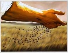 """Jesus said, """"The harvest is plentiful, but the workers are few. Ask the Lord of the harvest, therefore, to send out workers into his harvest field. Galatians 6 7, Colossians 3, Parables Of Jesus, Reap What You Sow, Christian Art, Christian Vegan, Word Of God, Holy Spirit, Christianity"""