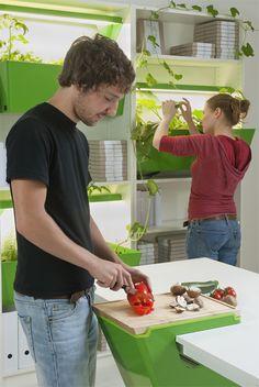 Parasite Farm, combina espaços para plantio e composteira para quem mora em apartamento, coisa de verde alemão!