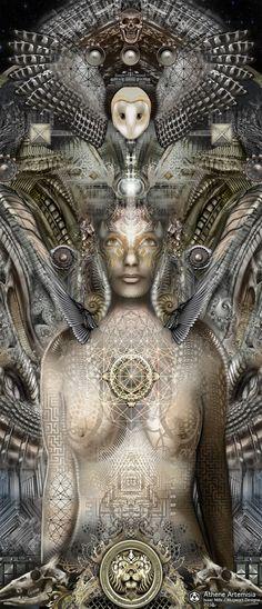 Owl-Mugwort Artemisia-artist/visionary