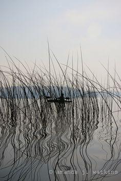MN - land of lakes & reeds.  http://ourfunwithfive.blogspot.com/2012/10/portage-paddle-trout-lake-sna-joyce.html