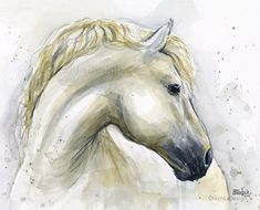 Horse Watercolor Painting Art Print Horse Art by OlechkaDesign