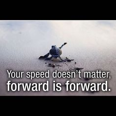 Your Speed Doesn't Matter, Forward Is Forward