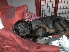 My little girl, reclining on her pillows