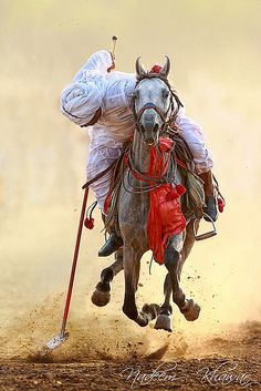 I can almost hear the thunder of this horse's hooves! Cavalry sport of Tent Pegging in rural Punjab, Pakistan. Timor Oriental, Tent Pegs, Tableau Design, Le Polo, Desert Life, Foto Art, Horse Art, Horse Riding, People Around The World
