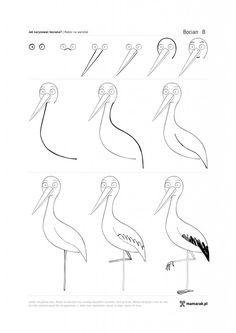 Birds, Drawings, Doodles, Animales, Fotografia, To Draw, Bird, Sketches, Drawing