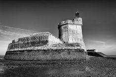 A marée basse Bourcefranc-le-Chapus - Fort Louvois
