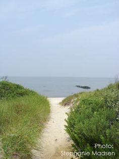 Higbee Beach is a favorite place to explore in Cape May, NJ ~ birding hot spot during migration.  Reminds me of my childhood growing up on LI near Fire Island in the 60's...