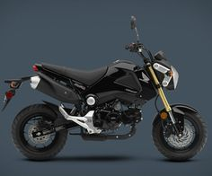 Somewhere between the dirt bike and the full-size motorcycle lies the Honda Grom ($3,000 and up)