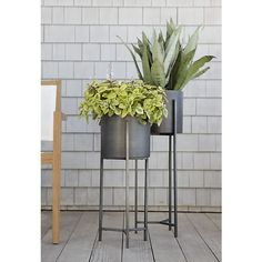 Dundee Floor Planters I Crate and Barrel