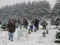Where to Find a Holiday Tree in the DMV http://ift.tt/2gDYnaQ   Youve still got two more weeks before the big day and you still need that tree for your apartment! So where should you go? We did the legwork for you. Here are some suggestions of places to get your tree in the DMV.  DC   Farm Fresh Route: Old City Farm and Guild      Firewood trees greenery and more the Old City Farm and Guild is a DC treasure. Their plants are locally sourced and their mission is really awesome. According to…