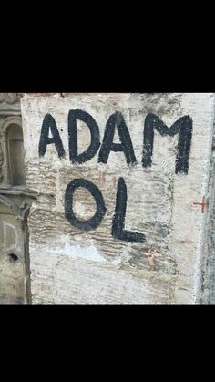 Adam ol Funny, Quotes, Wall, Qoutes, Funny Parenting, Quotations, Entertaining, Hilarious, Sayings