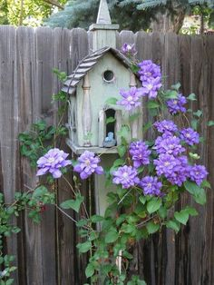 Birdhouse with clamatis