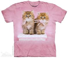 8173 Pretty Kittens