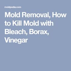 Mold Removal, How to Kill Mold with Bleach, Borax, Vinegar