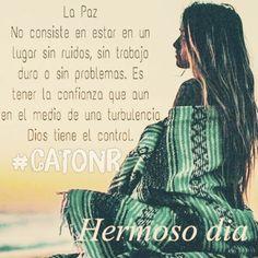 🙏AMEN‼️#catonr #amen🙏