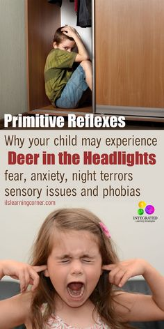 """Fear Paralysis Reflex: Why my Child Experiences """"Deer in the Headlights,"""" Fear, Anxiety, Night Terrors and Phobias   ilslearningcorner.com"""