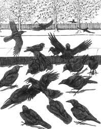 Crow Funeral by Tony Angell
