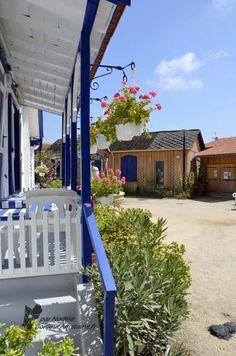 Cabanes de l'Herbe (village ostréicole) au Cap-Ferret...