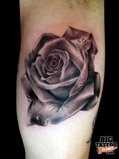 Red and gray rose tattoo | Big Rose Tattoo
