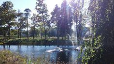Kleine Wasserspiele am Teich des Volksgartenbads, an einem für Salzburger Verhältnisse prachtvollen Herbsttag im Oktober. #HV