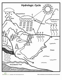 Fifth Grade Earth & Space Science Worksheets: Water Cycle Chart Worksheet (for older kids)