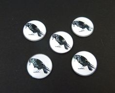 """5 Crow  Buttons. Handmade by Me.  Black Bird or Raven. Handmade By Me. Novelty or Craft Supplies. 3/4"""" or 20 mm. Washable, Dryer Safe. by buttonsbyrobin on Etsy"""