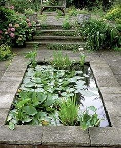 A beautiful pond is the most zen thing you can have in a garden. It's so peaceful.