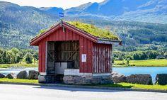 Bus stop. Norway