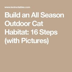 Image result for diy cat habitat