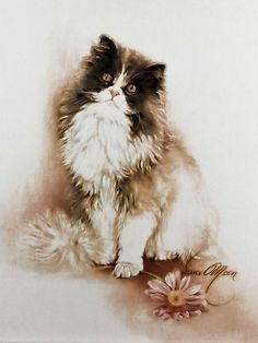 """Cat with flower"" - Art. Sara Moon 1982."