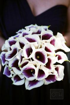 Picasso Calla Lily: http://www.stylemepretty.com/2015/04/07/20-single-bloom-bouquets-we-love/