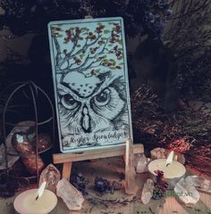 Higher Knowledge - Connected and Free - The Alchemist's Oracle
