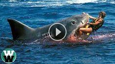10 DEADLIEST Shark Attack Stories #bassfishing  #fisheries  #fishingshop  #fishingtackleshop  #fishinghook  #lure  #reel  #fishingstore  #go fishing  #walleyefishing  #huntingandfishing  #bait  #tackle  #angler  #saltwater  #baitandtackle  #fising  #carpfish  #shimanofishing  #deepseafishing  #jig  #fishingknots  #livebait