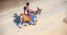No cars in Lamu. Travel with www.thesafaricoltd.com to see for yourself
