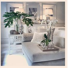 Greenery-gives a pop of colour in the home