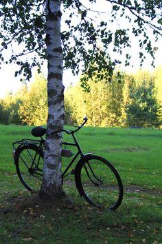 Mökillä Outdoor Furniture, Outdoor Decor, Cottage, Park, Plants, Summer, Summer Time, Cottages, Parks